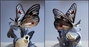 анатомични екземпляри от ръчно-боядисани коприна и вълна на Лана Круукс