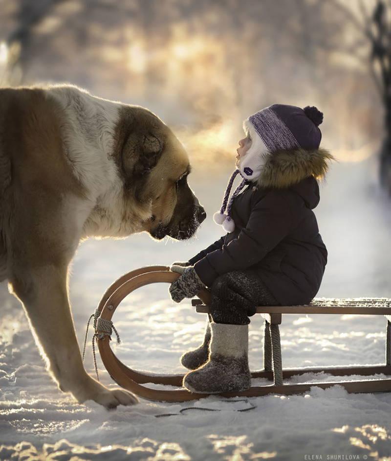 Снимка/Елена Шумилова