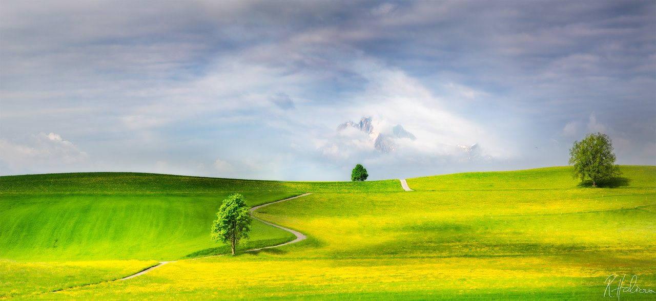 пейзажи заснети от фотографа Робин Халиуа
