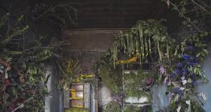 изоставена къща украсена с 4 000 цветя