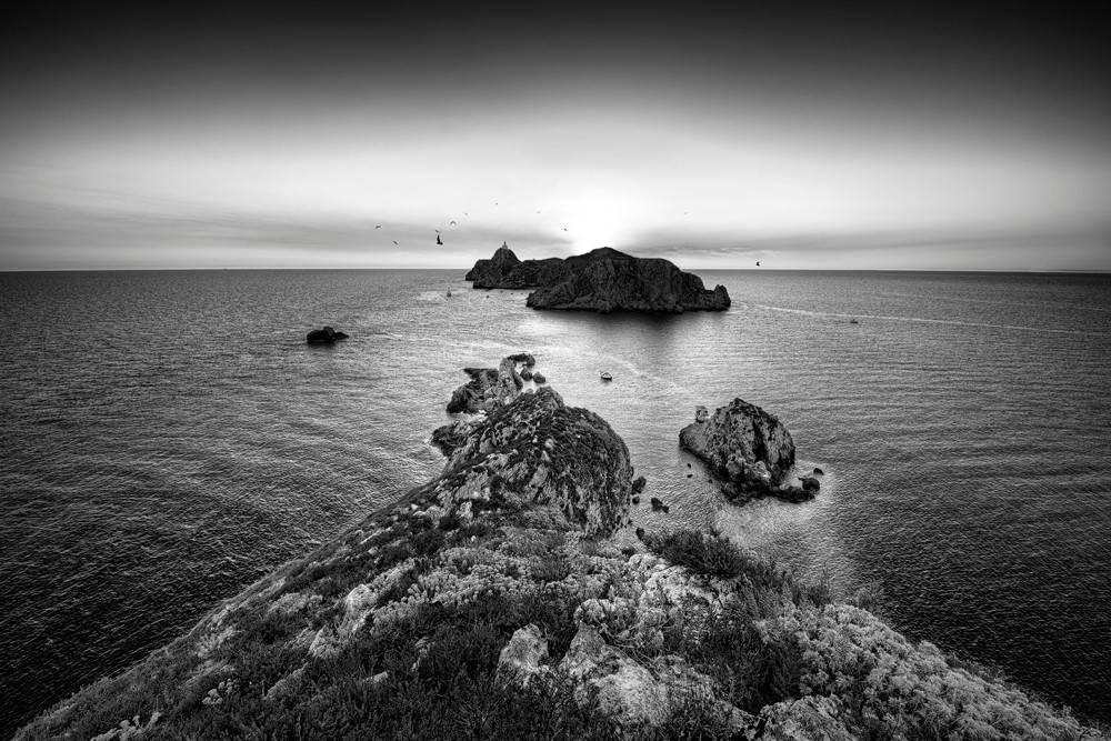 Снимка/Ненад Салич