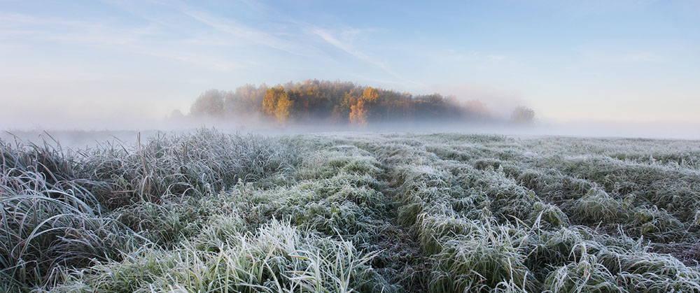 Снимка/Алекс Угалинков